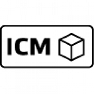 ICM Iterative Modellierung am Computer